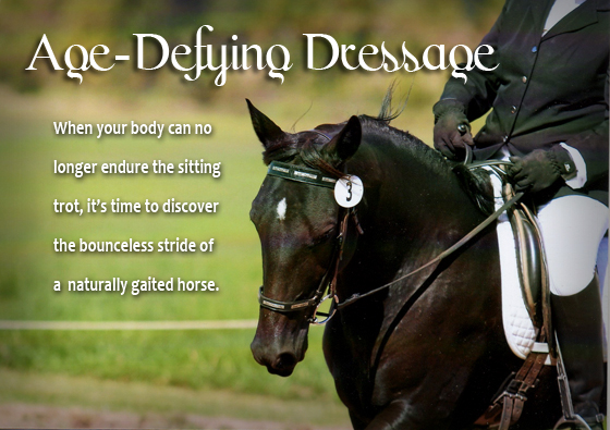 Age-defying dressage by Jennifer Klitzke