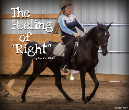 naturally-gaited-the-feeling-of-right-jennifer-klitzke