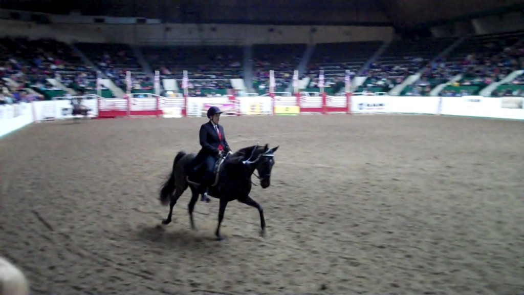 2011 Minnesota Horse Expo Gift of Freedom and Jennifer Klitzke