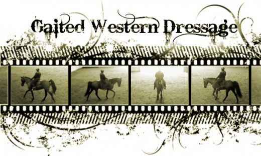 gaited western dressage
