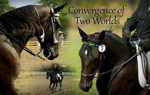 Gaited Dressage: Convergence of Two Worlds