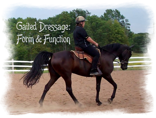 gaited dressage form and function