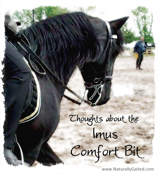 Thoughts about the Imus Comfort Bit