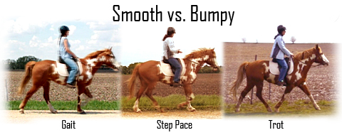 smooth-vs-bumpy