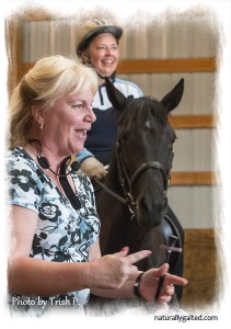 naturallygaited-Jennie-Jackson-dressage=as=applied-to-the-gaited-horse-clinic