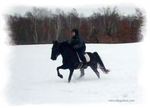 naturallygaited-riding-in-snow