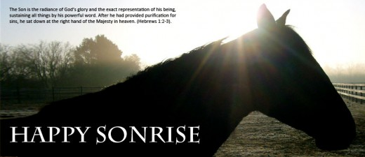 Happy SONrise