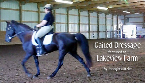 gaited-dressage-featured-at-lakeview-farm