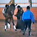 1995 Dominique Barbier Clinic