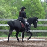 FOSH IJA Western Training 1 canter through the corner