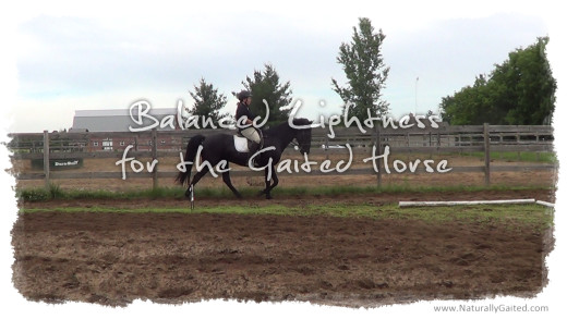 Balanced lightness for the gaited horse