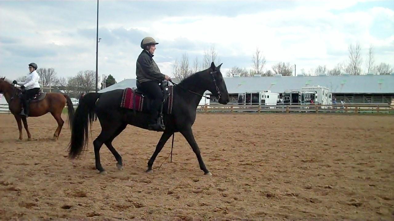 Jennifer Klitzke riding Gift of Freedom