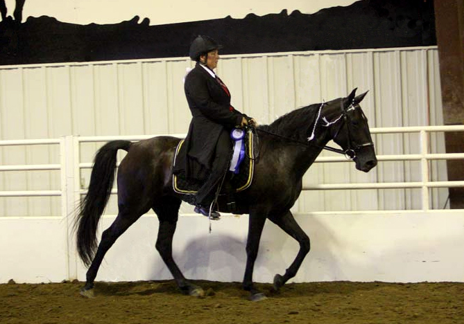 Jennifer Klitzke riding Gift of Freedom, TWH