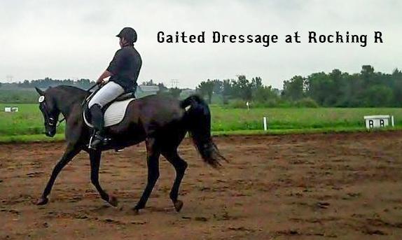 Gaited dressage at Rocking R