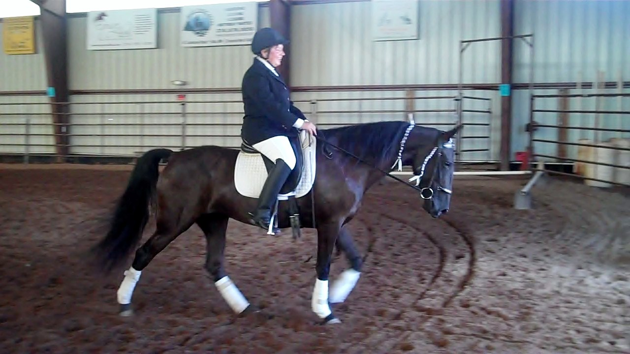Northwoods Dressage Association Gaited Dressage Demonstration