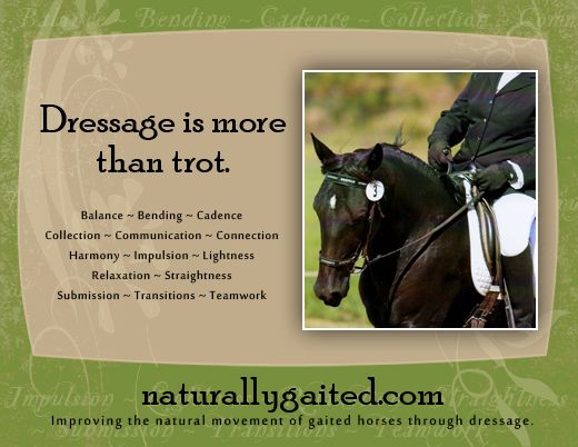 Improving the natural movement of gaited horses through dressage