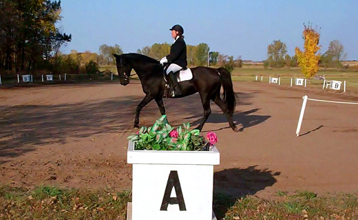 Gaited Dressage First Level Test Three