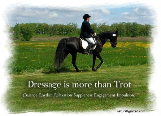 gaited dressage at Rocking R Farm