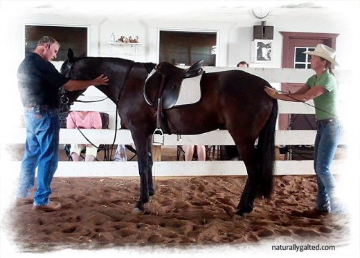 naturallygaited-whitesell-bauer-unlocking-braces
