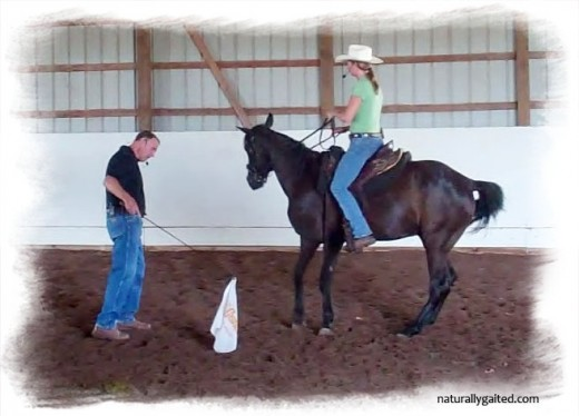 naturallygaited-whitesell-bauer-clinic-engaging-the-back