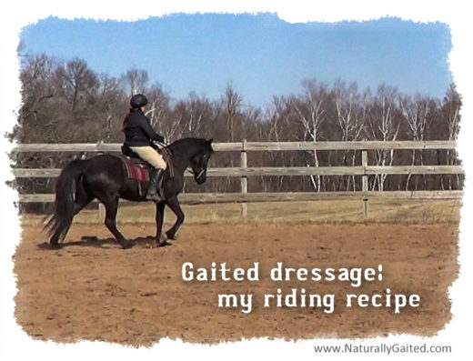 Gaited dressage: my riding recipe
