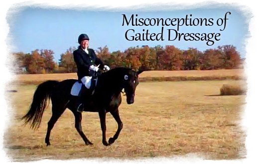 misconceptions-of-gaited-dressage