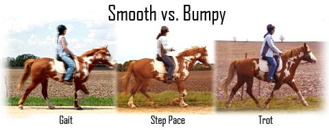 smooth-vs-bumpy