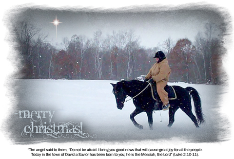 naturally-gaited-merry-christmas