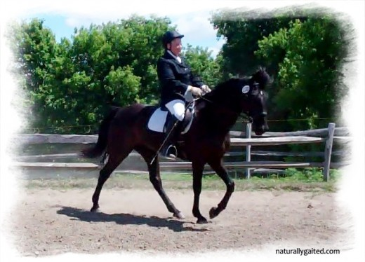 naturallygaited-gaited-dressage-jennifer-klitzke-north-run-farm-10