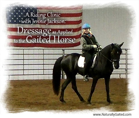 jennie-jackson-clinic-dressage-as-applied-to-the-gaited-horse