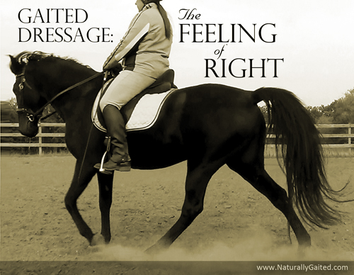 Gaited dressage: The feeling of right