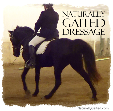 naturally gaited dressage by jennifer klitzke
