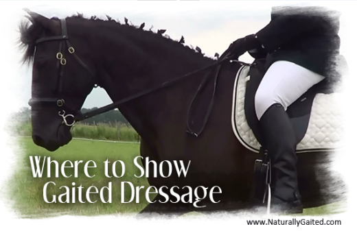 where-to-show-gaited-dressage-in-my-area