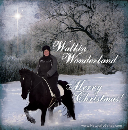 2014-Merry-Christmas-naturally-gaited