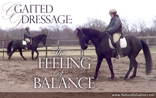 Gaited Dressage: The Feeling of Balance