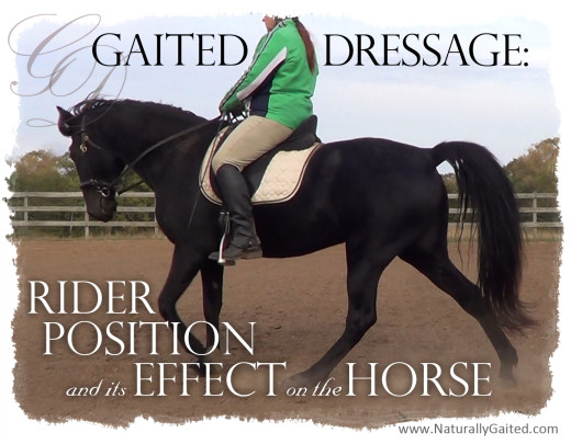Gaited dressage: Rider position and its effect on the horse