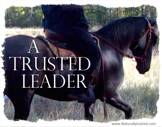 A Trusted Leader