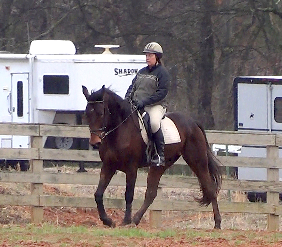 Jennifer Klitzke riding a gaited dressage school master