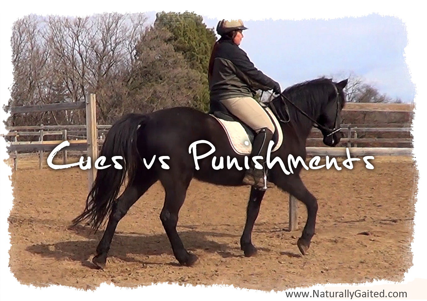 cues vs punishments