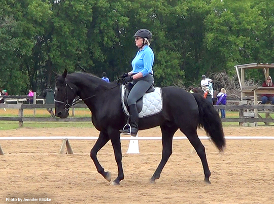 Gaited Dressage at Three Ring Circus