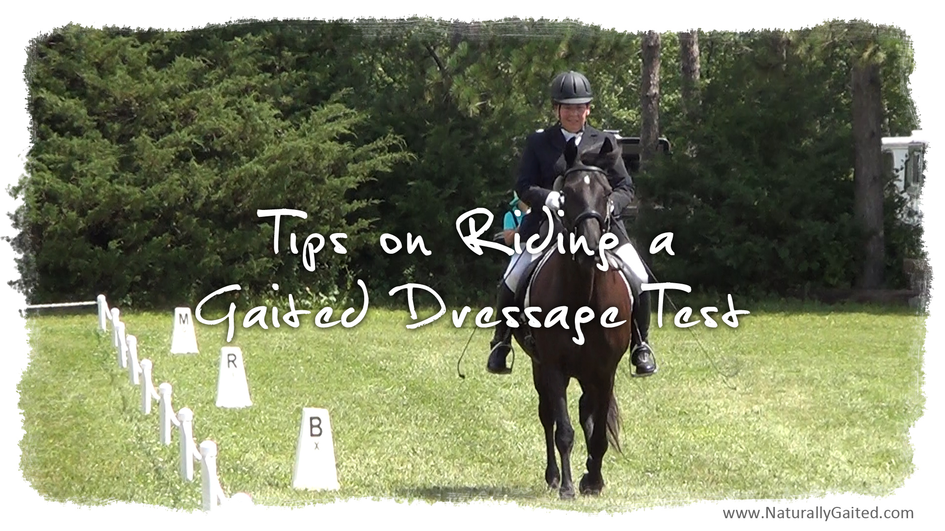 Tips on Riding a Gaited Dressage Test