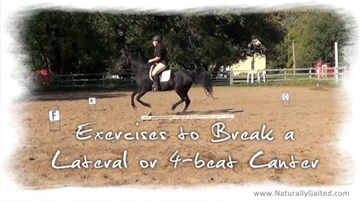 Exercises to break a lateral or four beat canter