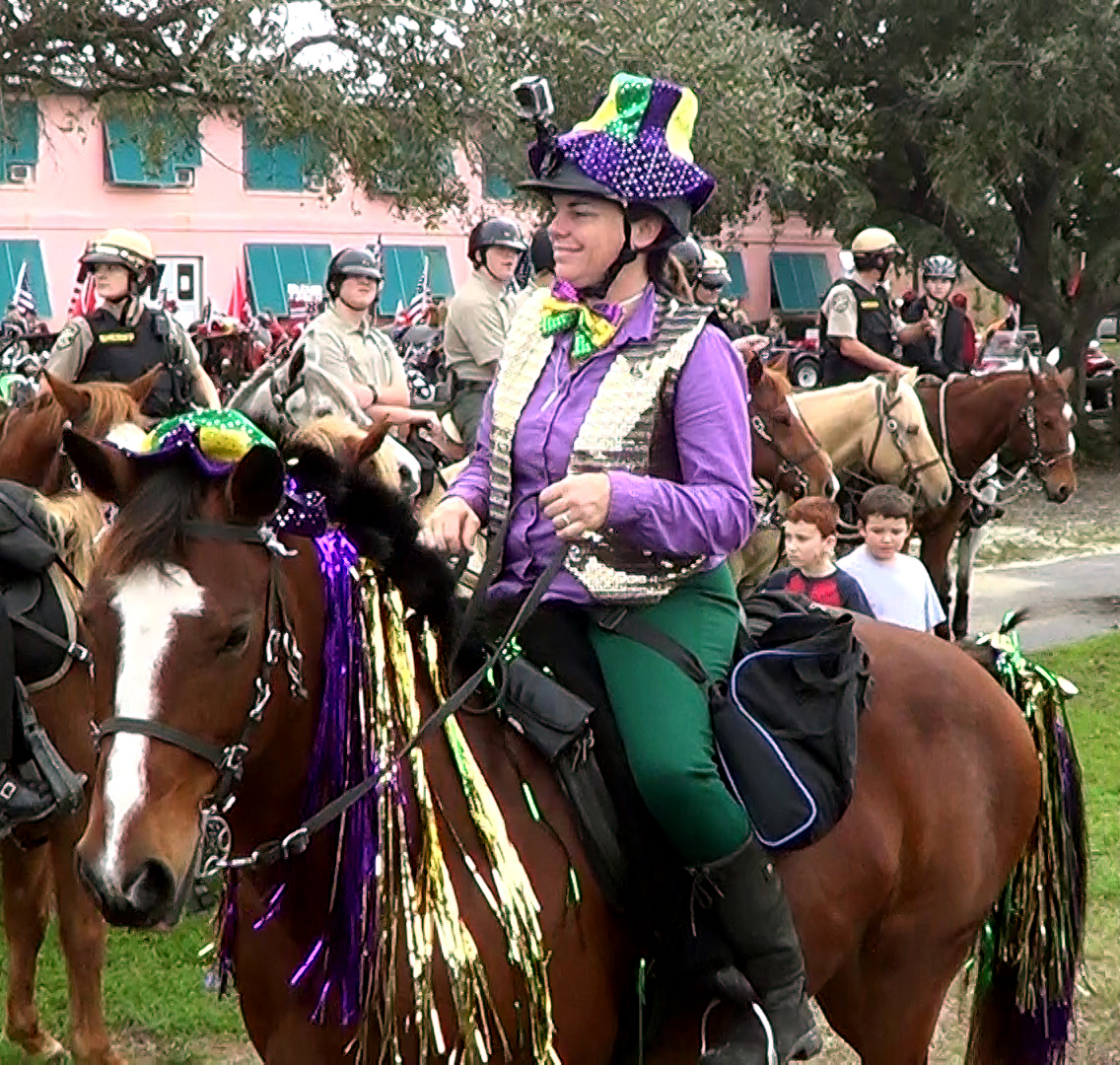 Festively dressed horse and rider