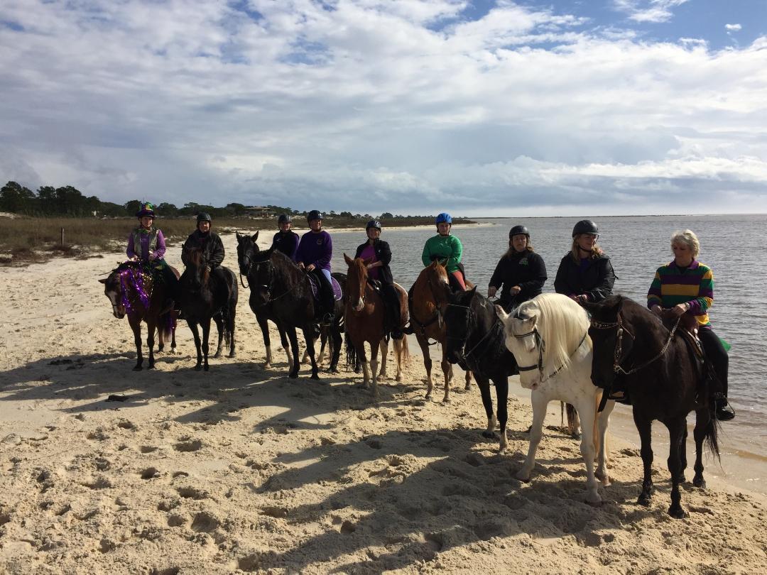 Amazing Gaits Equestrian Center at Daulphin Island