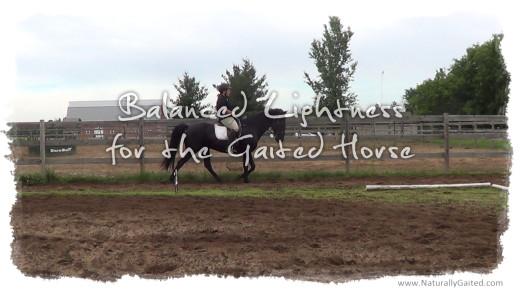 Balanced lightness for the gaited horse