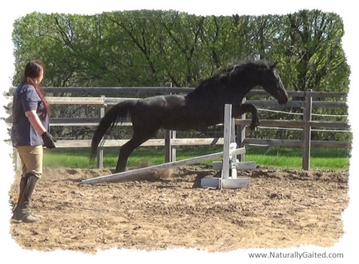 050617 Lady jumping