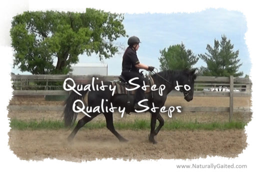 quality step to quality steps