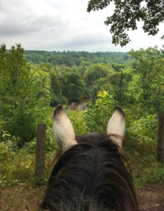 The St. Croix River vista through the ears of Indy.